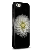 Чехол для iPhone 5/5s Flower